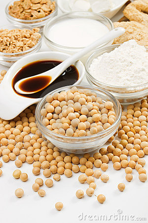 Soybean and various soy products