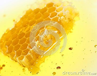 Spływowy honeycomb