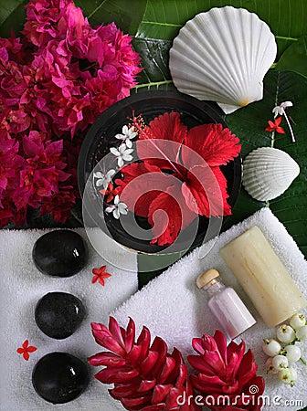 Free Spa Beauty Royalty Free Stock Photo - 6820835