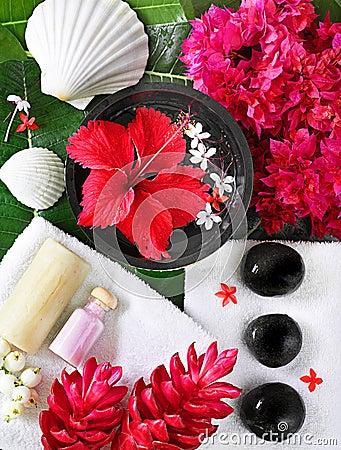 Free Spa Beauty Royalty Free Stock Photography - 9149137
