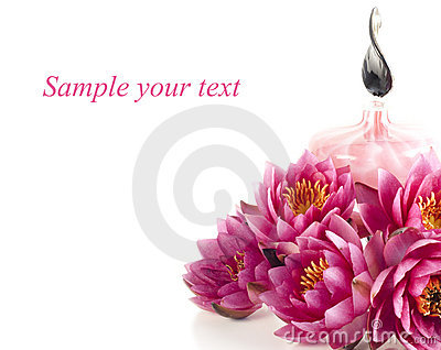 Spa composition with fragrance oil and water lily