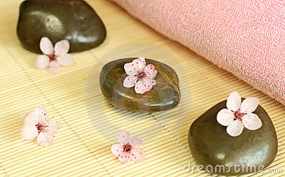 Spa composition of stones and pink flowers