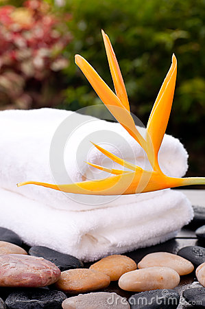 Spa concept with heliconia flower in garden