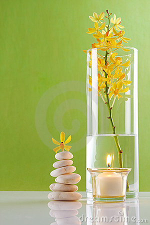 Spa Concepts with green background