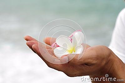 Spa flower hand ignore
