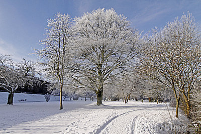 Spa park in winter, Bad Rothenfelde, Germany