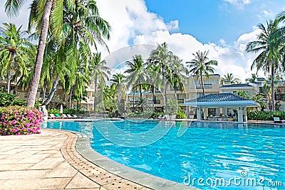 Spa resort water pool palm