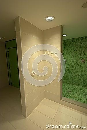 SPA showers bathroom