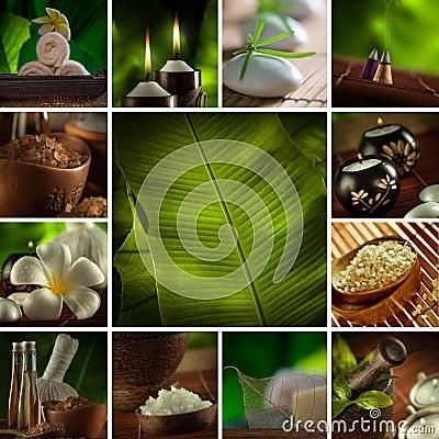 Free Spa Staff Mix Stock Photography - 29939482