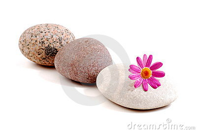 Spa stone and pink flower