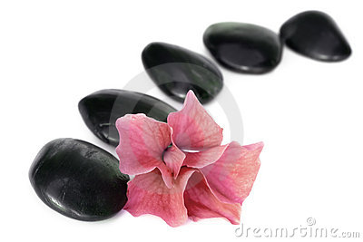 Spa Stones and Flower