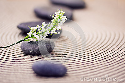 Spa stones and flowers, wellness/beauty care