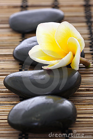 Spa stones with frangipani