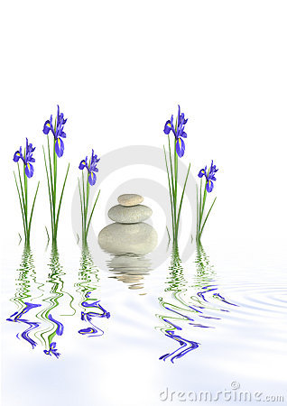 Spa Stones and Iris Flowers