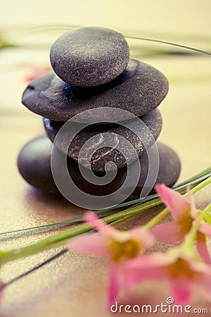 Spa wellness and beauty