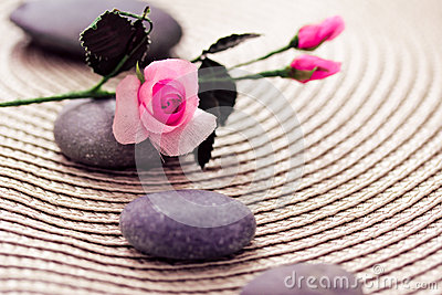 Spa wellness: stones for massage and rose