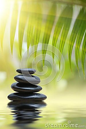 Free Spa Zen Stones Stock Photography - 12469382