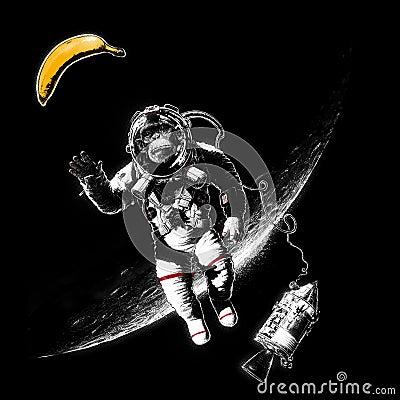 Free Space Monkey Royalty Free Stock Photos - 85158098