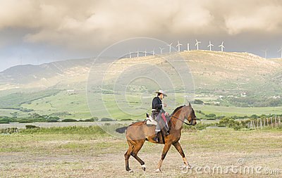 A spanish horseman Editorial Stock Photo