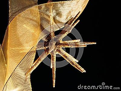 Sparkling christmas golden star