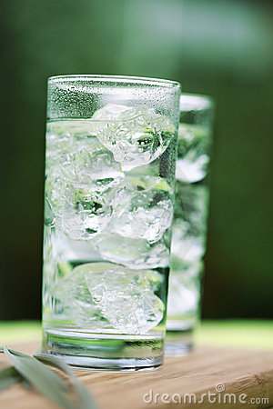 Free Sparkling Mineral Water With Icecubes Royalty Free Stock Photo - 5096175