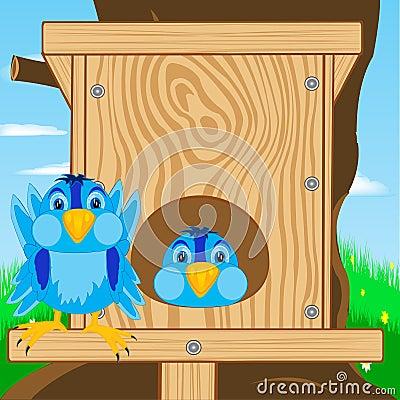 Bird sparrow and bird house