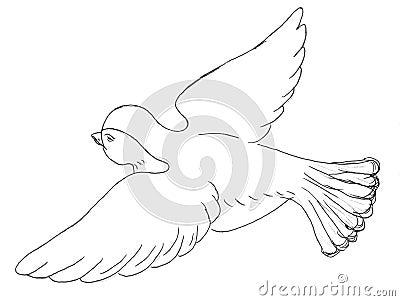 Sparrow bird sketch