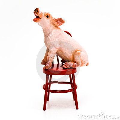 Speak Up ! Pig on Chair