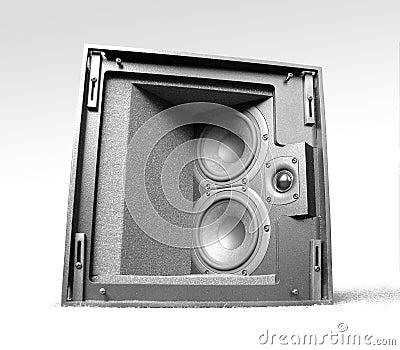 Speaker- isolated