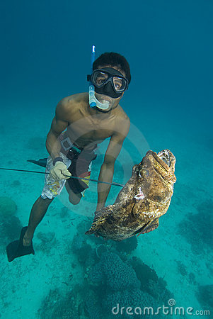 Spearfisherman and catch