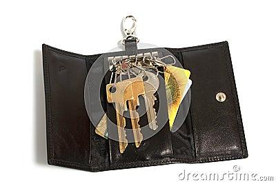 Special handbag for key s