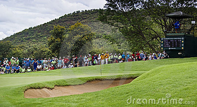 Spectators on the 8th Green Editorial Stock Photo