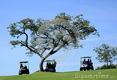 Spectators at golf tournament Editorial Stock Image