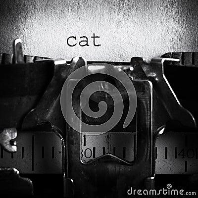 Spelling cat