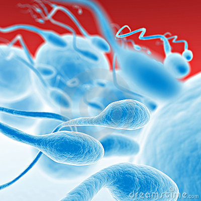 Free Sperm Going For The Egg Stock Images - 6689724