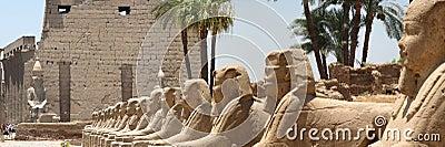 Sphinx corridor