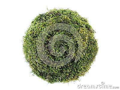 Sphère de mousse