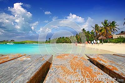 Spiaggia caraibica Messico del treesl della palma dell isola di Contoy