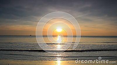 Spiaggia di alba stock footage