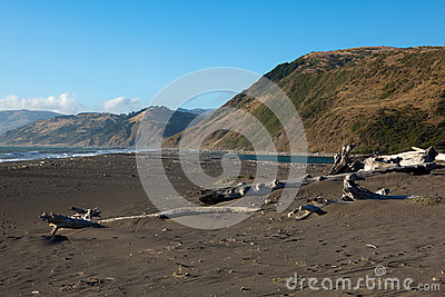 Spiaggia di Mattole nell area di re Range National Conservation, Californ