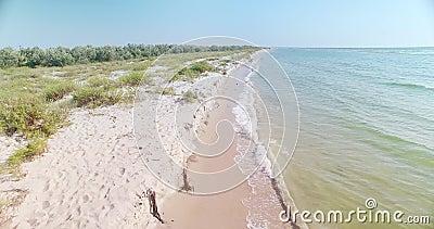 Spiaggia di sabbia bianca nella regione di Kiliya, Ucraina video d archivio