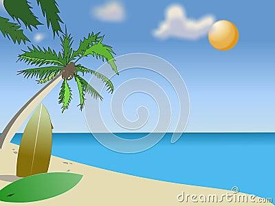 Spiaggia piena di sole
