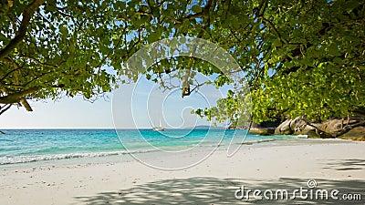 Spiaggia sabbiosa vuota Bello paesaggio tropicale video d archivio