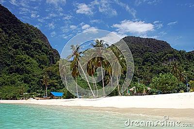 Spiaggia sul Phi di Phi di Ko, Tailandia