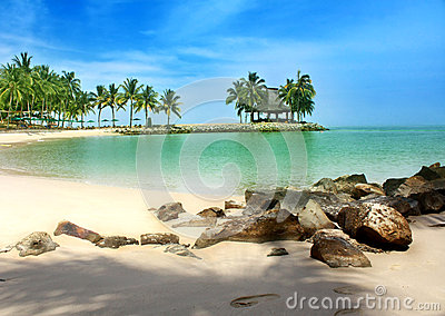 Spiaggia tropicale