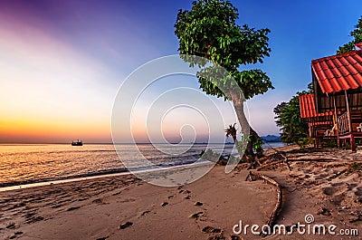 Spiaggia tropicale al tramonto fotografie stock for Disegni di casa sulla spiaggia tropicale