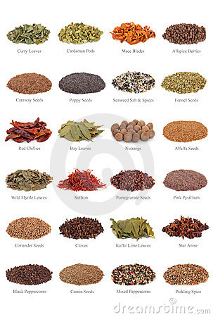 Free Spice And Herb Collection Stock Photos - 12351653