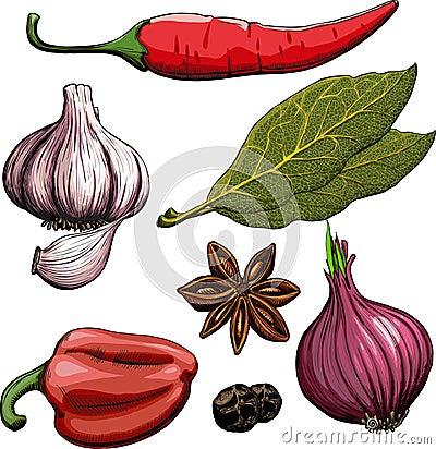 Spice. Onion, garlic, pepper, bay leaf, hot pepper