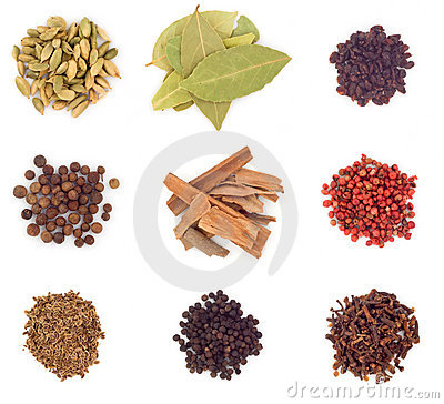 Free Spices Stock Photos - 6069103