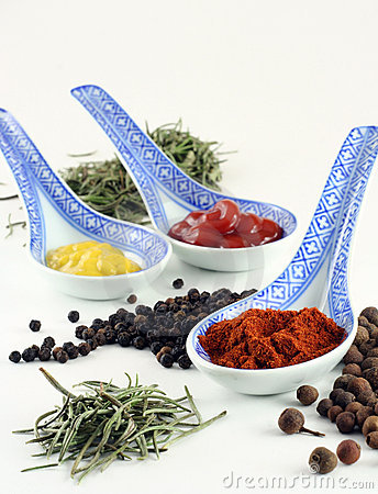 Free Spices And Condiments Stock Images - 1874204